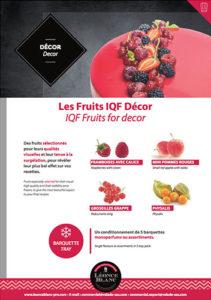 Fiche - Fruits IQF Décor